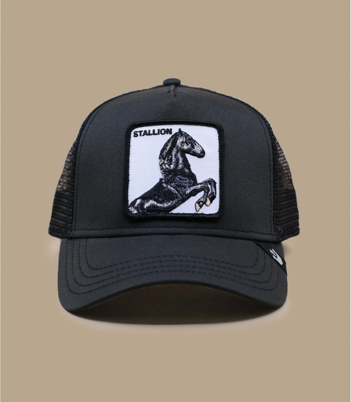zwarte paardenvrachtwagenchauffeur
